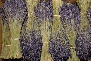 dried-lavender_12118